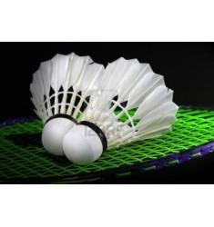 Abonnement Squash ou Badminton